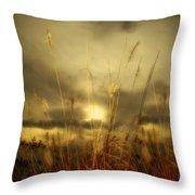 Late Summer Sun Through The High Grass Throw Pillow