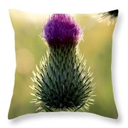 Late Summer Thistle Throw Pillow