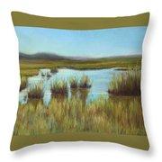 Late Sun On The Marsh Throw Pillow