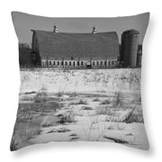 Late Winter At A Wisconsin Farm Throw Pillow