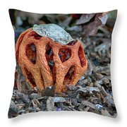 Latticed Stinkhorn Throw Pillow