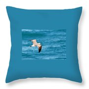Laughing Gull 003 Throw Pillow