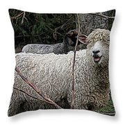 Laughing Ram Throw Pillow