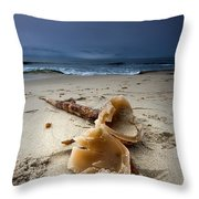 Laughing With A Mouth Full Of Sand Throw Pillow
