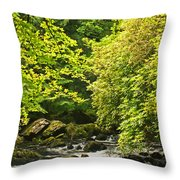 Lauragh River West Cork Throw Pillow