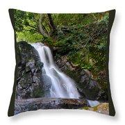 Laurel Falls Throw Pillow