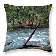 Laurel Hill Creek Hemlock Overlook Throw Pillow