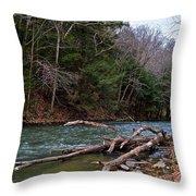 Laurel Hill Creek Throw Pillow