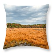 Laurel Summit State Park Bog Throw Pillow