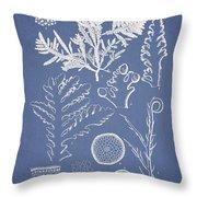 Laurencia Concinna And Hypnea Musciformis Throw Pillow