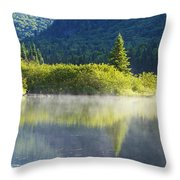 Laurentian Summer Morning Throw Pillow