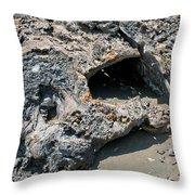 Lava Creation Throw Pillow