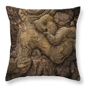 Lava Mother With Child On Galapagos Islands Throw Pillow