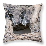 Lava Shapes Throw Pillow