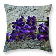Lavender On White Stone Throw Pillow