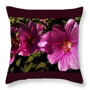Lavatera - A Study In Pink Throw Pillow