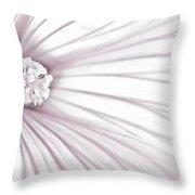Lavatera Flower Stamen Macro  Throw Pillow