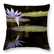 Lavendar Reflections In The Lake Throw Pillow