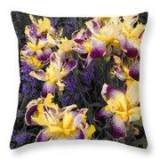 Lavender And Irises Throw Pillow