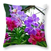 Lavender And Red Orchids At Maerim Orchid Farm In Chiang Mai-tha Throw Pillow