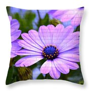 Lavender Beauties Throw Pillow
