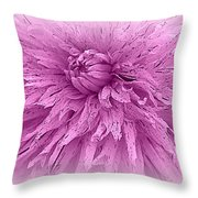 Lavender Beauty Throw Pillow