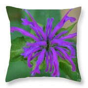 Lavender Bloom Throw Pillow