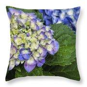 Lavender Blue Hydrangea Blossoms Throw Pillow