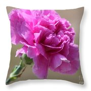 Lavender Carnation Throw Pillow