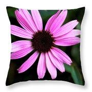 Lavender Daisy Throw Pillow