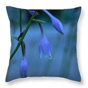 Lavender Evening Throw Pillow