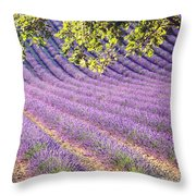 Lavender Field In France Throw Pillow