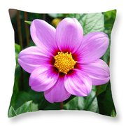 Lavender Flower Throw Pillow