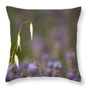 Lavender, France Throw Pillow