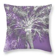Lavender Glow Palm Tree Myakka River State Park Usa Throw Pillow