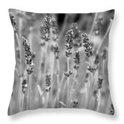 Lavender In Black And White Throw Pillow