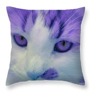 Lavender Kitten Throw Pillow