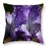 Lavender Lust Throw Pillow