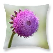 Lavender Perfection Throw Pillow