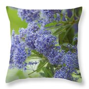 Lavender Pompoms Throw Pillow