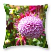 Lavender Purple Dahlia Flowers Art Prints Throw Pillow