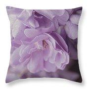 Lavender Purple Roses Rhapsody Throw Pillow