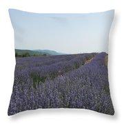 Lavender Sky Throw Pillow