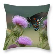 Lavender Thistle And Pipevine Swallowtail Butterfly Throw Pillow