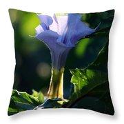 Lavender Trumpet Flower Throw Pillow