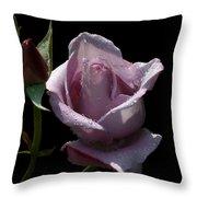 Lavendish Throw Pillow