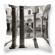 Law Faculty  Throw Pillow