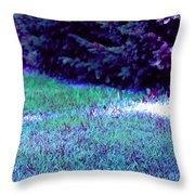 Lawn Blue Throw Pillow