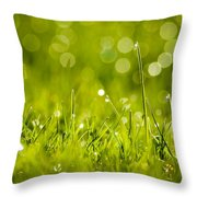 Lawn Twinklers Throw Pillow