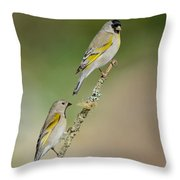 Lawrence Goldfinch Pair On Branch Throw Pillow